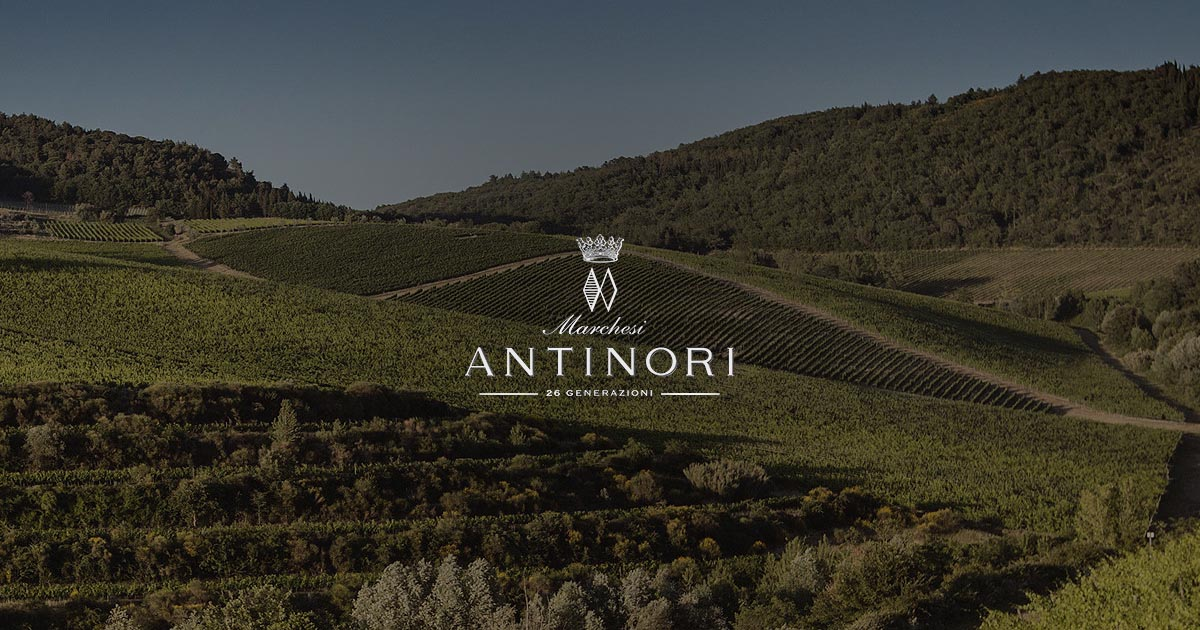 Antinori vineyards