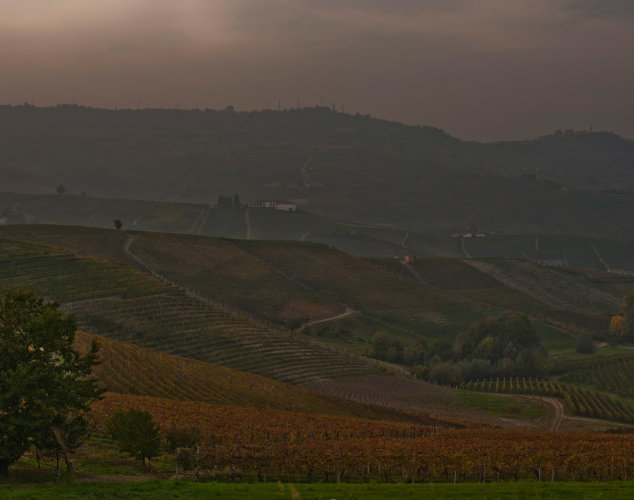 Prunotto.  In a Centuries-old territory: The Langhe