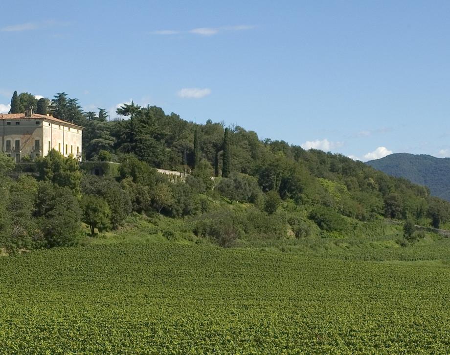Tenuta Montenisa