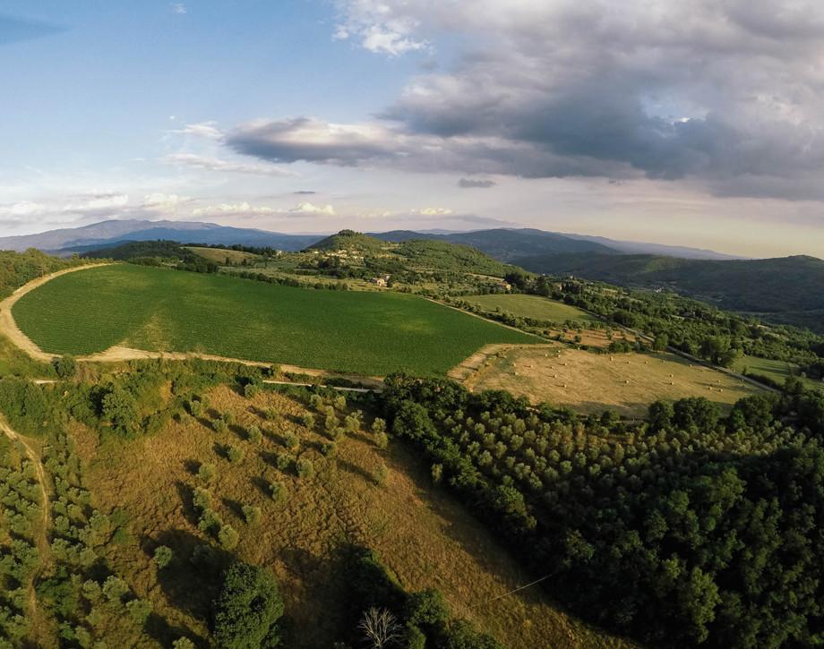Nella terra di Dante, sulle colline di Fiesole